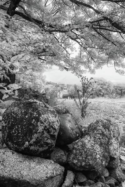 Photograph - Autumn Scene In Infrared by Joann Vitali