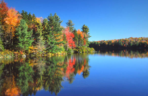 New England Autumn Photograph - Autumn Scenic by Denistangneyjr