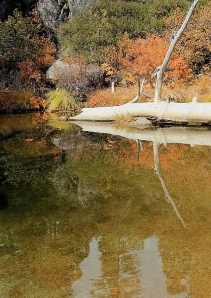 Photograph - Autumn Serenity  by Sean Sarsfield
