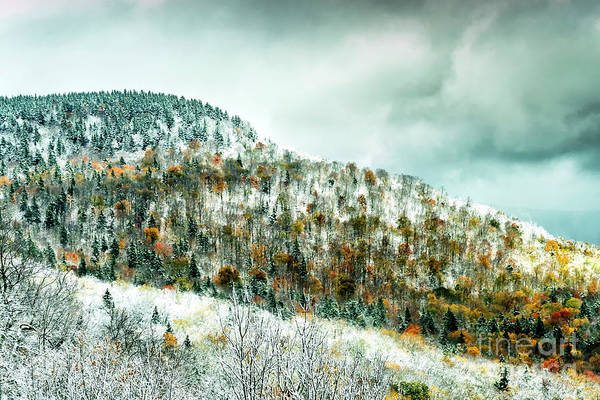 Photograph - Autumn Snow In The Highlands by Thomas R Fletcher