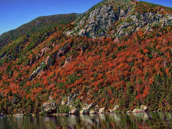Photograph - Autumn Splendor by Anthony Dezenzio