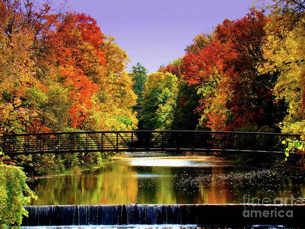 Spillway Photograph - Autumn Splendour In Ontario by Al Bourassa