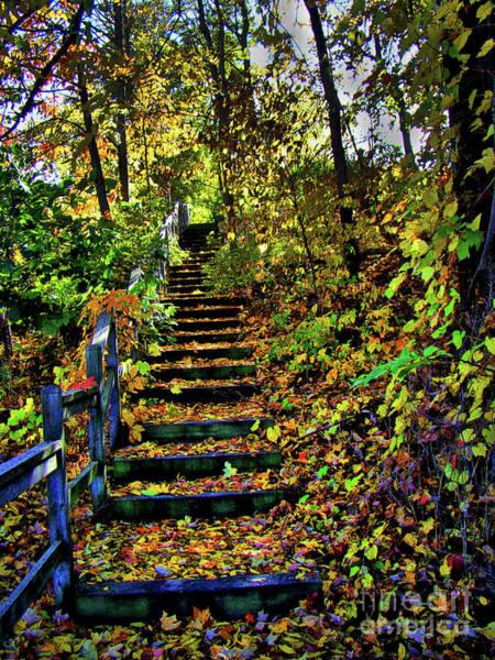Wall Art - Photograph - Autumn Splendour In Ontario IIi by Al Bourassa
