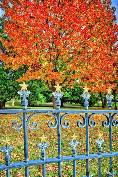 Photograph - Autumn Stars And Bars At The Texas Capital by Lynn Bauer