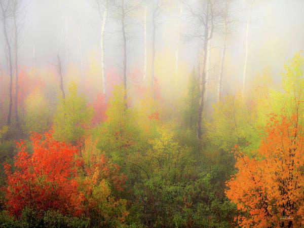 Photograph - Autumn Stillness 2 by Leland D Howard