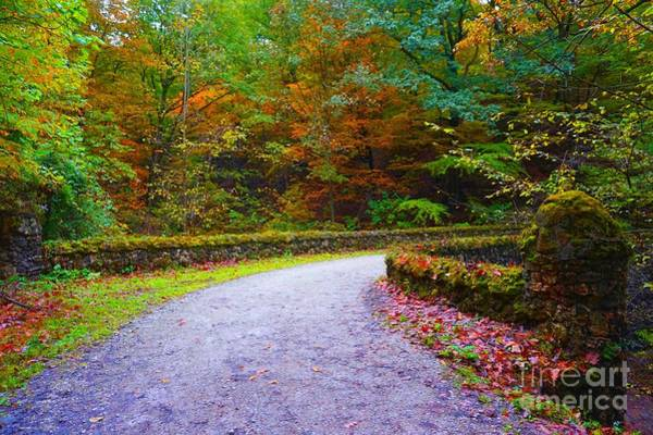 Photograph - Autumn Stone Bridge Over The Troubled Water by Christopher Shellhammer