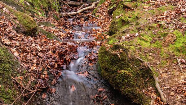 Wall Art - Photograph - Autumn Stream by Mike Walker