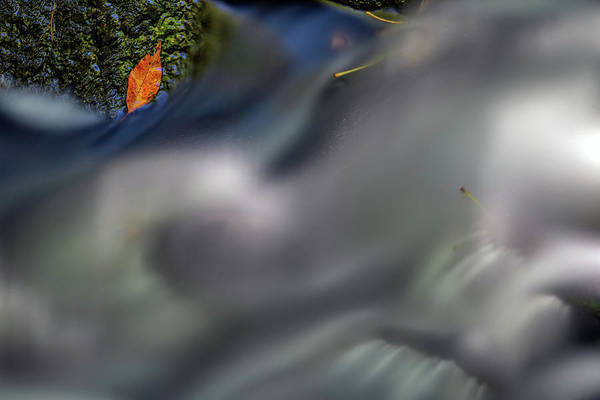 Photograph - Autumn Stream by Rick Berk