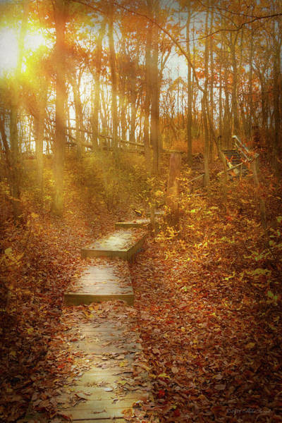 Photograph - Autumn - The Morning Hike by Mike Savad