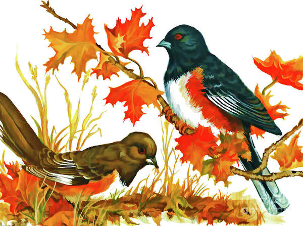 Digital Art - Autumn Towhees  by D Hackett