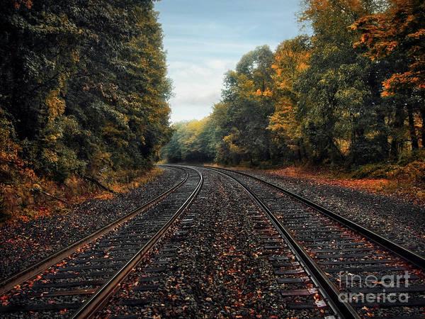 Photograph - Autumn Tracks by Mark Miller