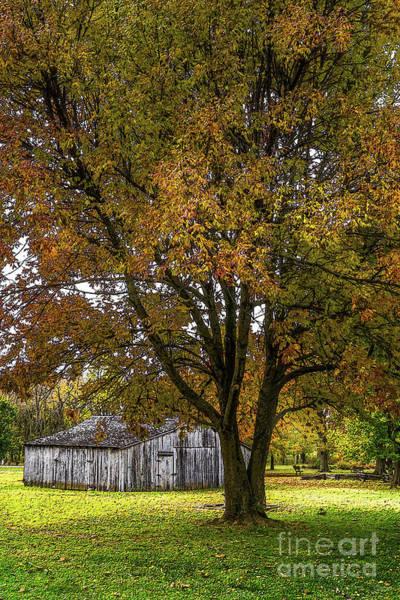 Wall Art - Mixed Media - Autumn Tree And Barn Painterly by Jennifer White