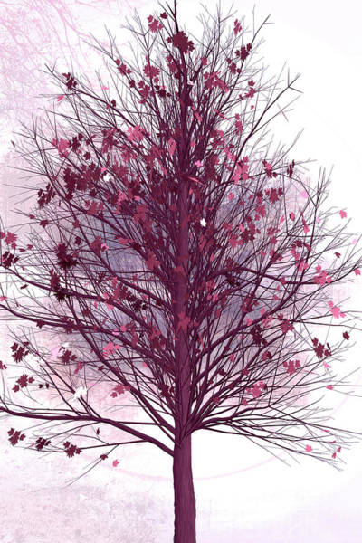 Digital Art - Autumn Tree At First Frost by Debra and Dave Vanderlaan