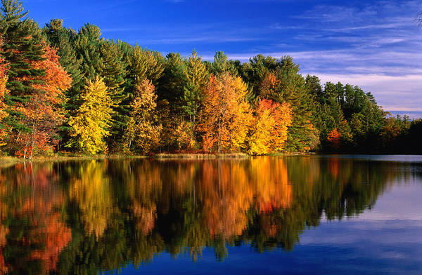 New Hampshire Photograph - Autumn Trees In New Hampshire,new by Lonely Planet