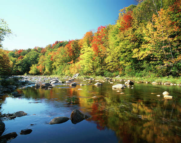New England Autumn Photograph - Autumn Trees Reflected In Deerfield by Danita Delimont