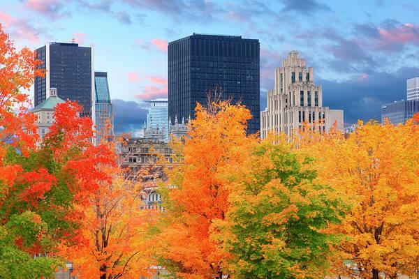 Quebec City Photograph - Autumn Trees With City Skyline by Jean-pierre Lescourret