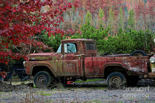 Wall Art - Photograph - Autumn Vintage Truck by American School