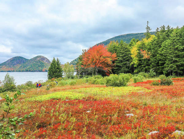 Photograph - Autumn Walk From Jordan Pond House by Dan Sproul