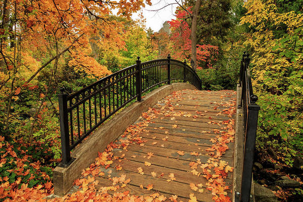 Photograph - Autumn Walkway Bridge by James Eddy