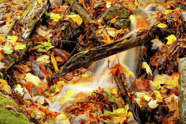 Wall Art - Photograph - Autumn Water Flow 1 by Dan Carmichael