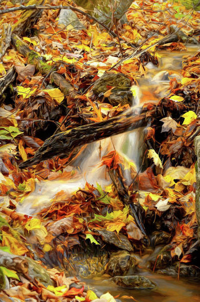 Wall Art - Photograph - Autumn Water Flow 2 by Dan Carmichael