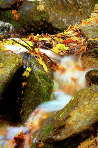 Wall Art - Photograph - Autumn Water Flow 5 by Dan Carmichael