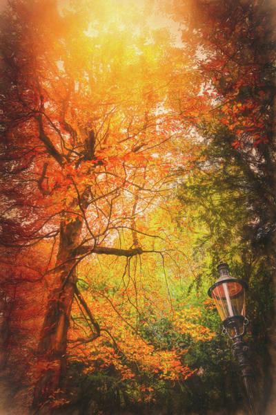 Wall Art - Photograph - Autumnal Awning  by Carol Japp