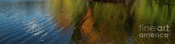 Photograph - Autumnal Panorama by Les Palenik