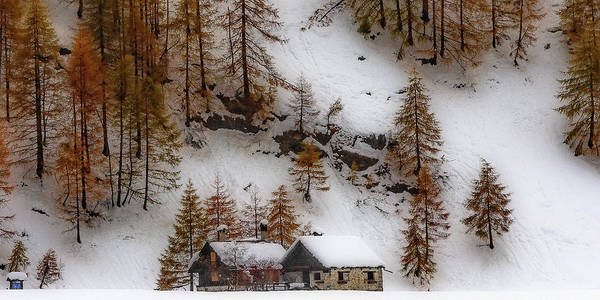 Photograph - Autumnal Snowfall by Roberto Pagani