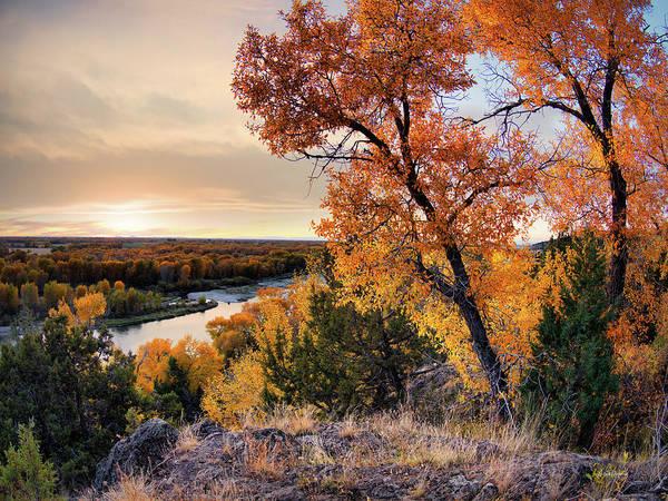 Photograph - Autumns Best by Leland D Howard