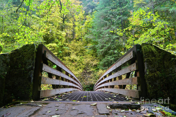 Across Photograph - Autumns Bridge 2 by American School