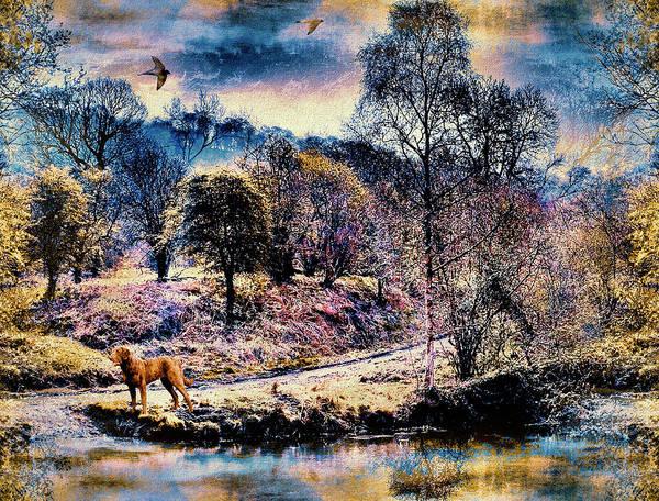 Wall Art - Photograph - Autumns End by Natalie Holland
