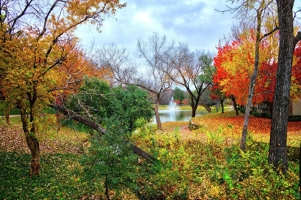 Photograph - Autumn's Final Farewell by Lynn Bauer