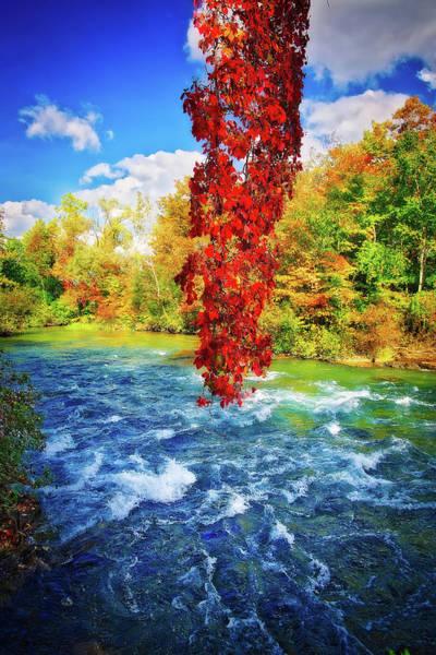 Photograph - Autumn's Flame - Niagara Falls, New York by Lynn Bauer