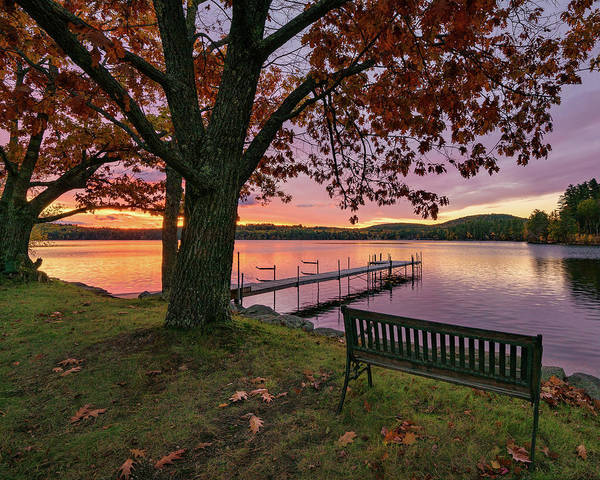 Photograph - Autumn's View by Darylann Leonard Photography