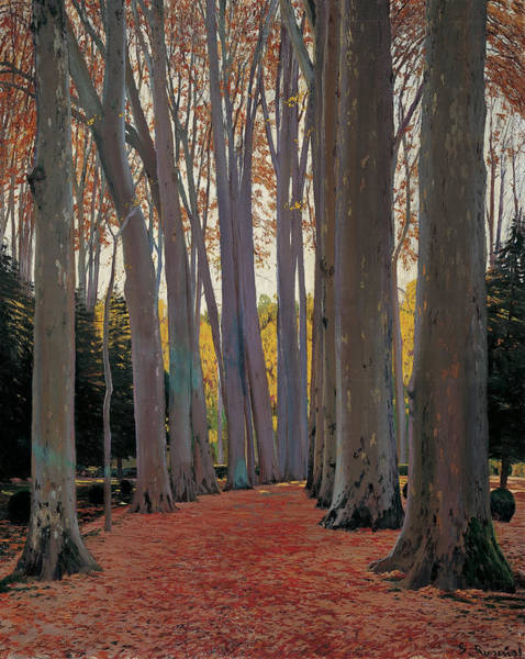 Painting - Avenue Of Plane Trees by Santiago Rusinol
