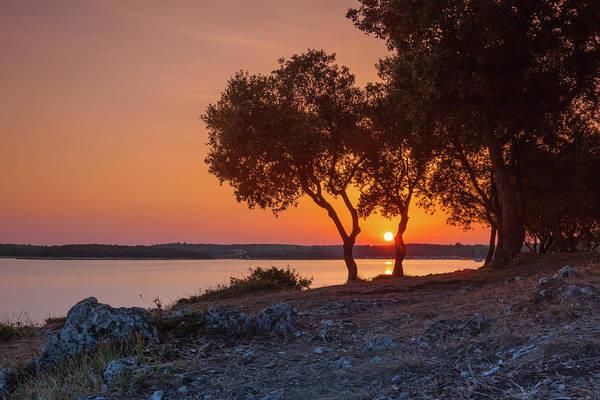 Photograph - Awakening In Orange by Davor Zerjav