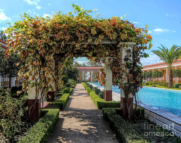 Wall Art - Photograph - Awesome Getty Villa Landscape Walkway Pool California  by Chuck Kuhn