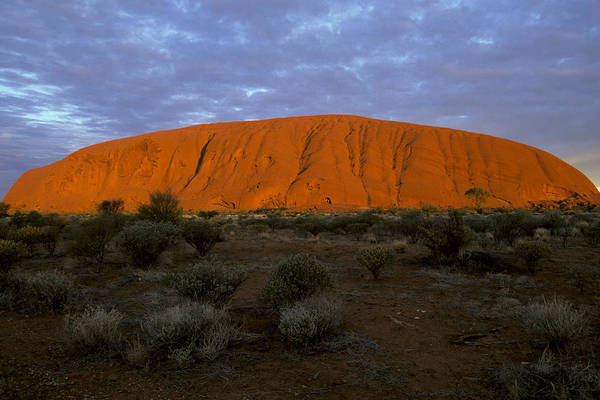 Wall Art - Photograph - Ayers Rock by David Hosking