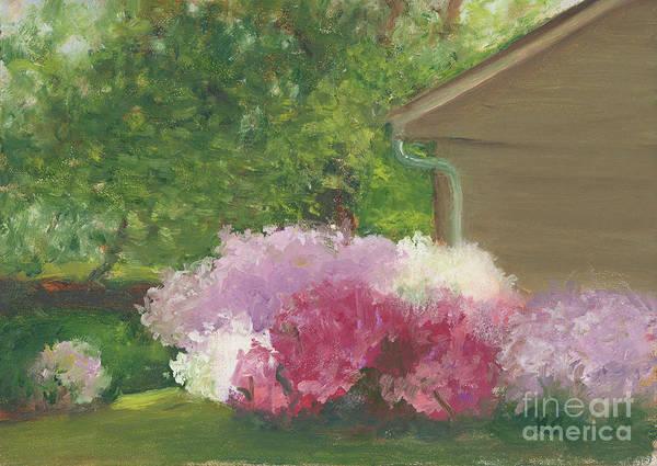 Painting - Azalea Spring In Edgewater by Linda Anderson