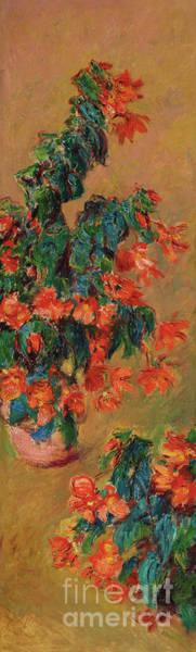 Wall Art - Painting - Azaleas Rouges En Pot, 1883  by Claude Monet