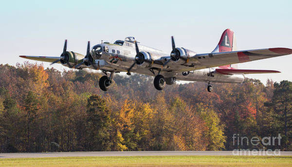 Photograph - B-17 Flying Fortress by Kevin McCarthy