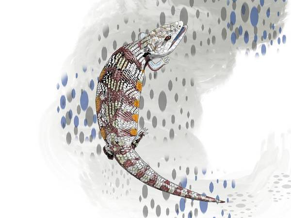 Wall Art - Drawing - B Is For Blue Tongue Lizard by Joan Stratton