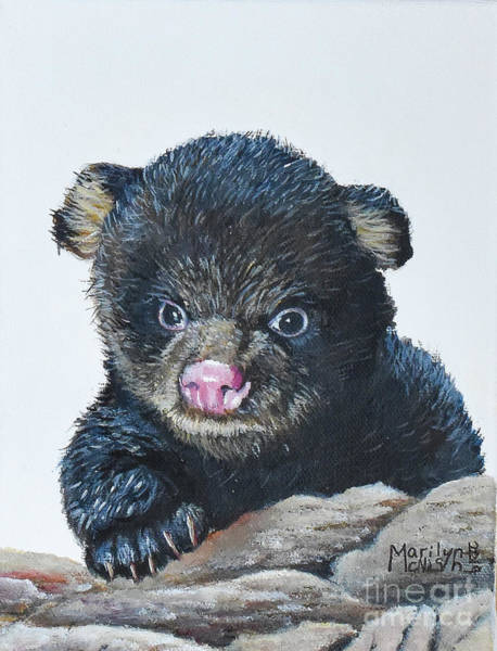 Painting - Baby Bear  by Marilyn McNish