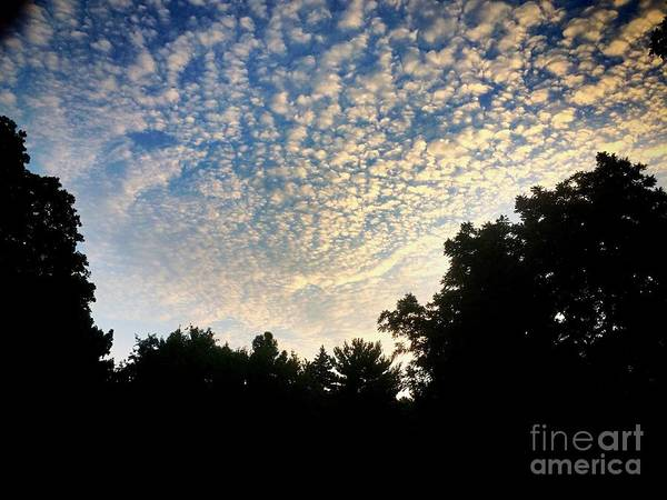 Photograph - Baby Clouds by Frank J Casella