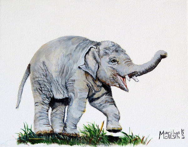 Painting - Baby Elephant by Marilyn McNish