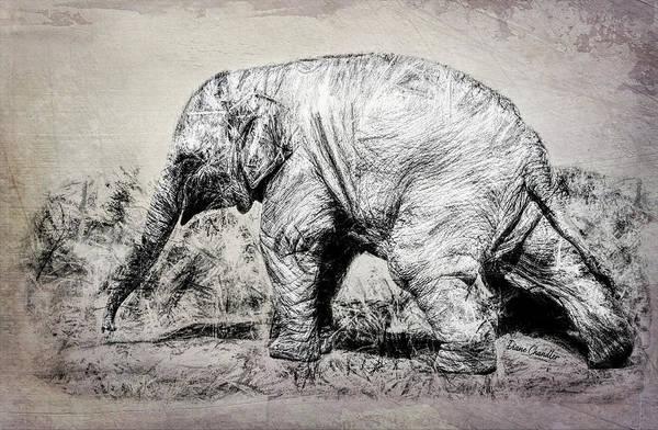Baby Elephant Walk Art Print