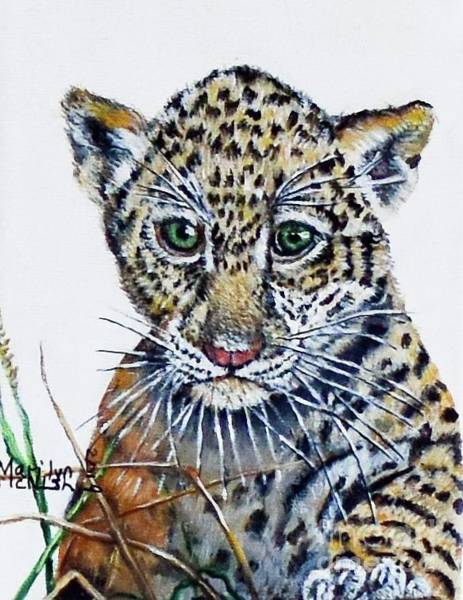 Painting - Baby Jaguar by Marilyn McNish