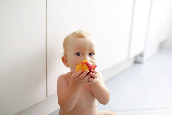 Photograph - Baby Led Weaning, Baby Learning To Eat With His First Foods. by Joaquin Corbalan