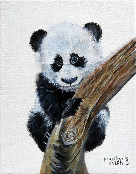 Painting - Baby Panda by Marilyn McNish